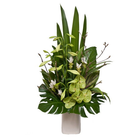 Premium Flower Arrangement Kelvin Hall Floral Design