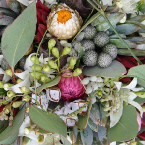 Florist Choice (natives) Bouquet