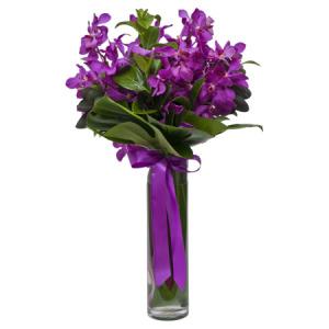 Vanda Orchid Vase