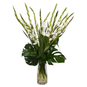 Gladioli Bouquet In Glass Vase
