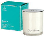 Inspire- Hyacinth and Mimosa Soy Candle